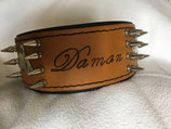 Halsband Damon