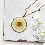 Gänseblümchen • Halskette gold | Blütenschmuck