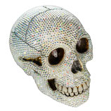 BK Crystals Skull