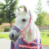 Ponyhalfter für Kinder von Horze