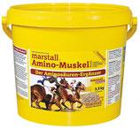 Amino-Muskel PLUS von Marstall