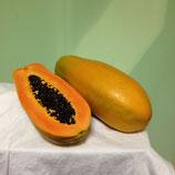 Papaya Formosa