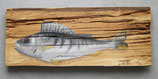Egli Bodenseefisch auf urigem Brett
