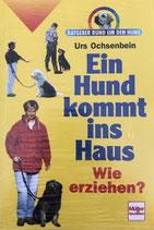 Ochsenbein Urs, Ein Hund kommt ins Haus - Wie erziehen?