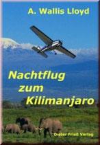 Nachtflug zum Kilimandscharo
