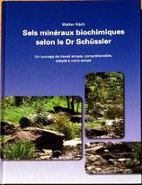Walter Käch, Sels minéraux biochimiques selon le Dr Schüssler
