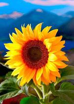authentic CARD - Sonnenblume Nr. 01