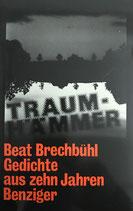 Beat Brechbühl, Traumhämmer - Gedichte aus zehn Jahren