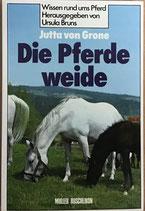 von Grone Jutta, Die Pferdeweide (antiquarisch)