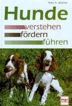 Widmer Peter A., Hunde verstehen - fördern - führen