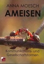 Moesch Anna, Ameisen. Kommunikations- und Gesellschaftsformen