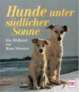 Silvester Hans, Hunde unter südlicher Sonne