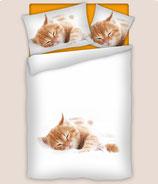 Bettwäsche Baumwollsatin Kätzchen