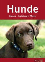 Hunde - Rassen-Erziehung-Pflege