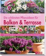 Die schönsten Pflanzideen für Balkon & Terrasse