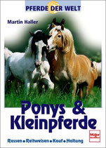 Halle Martin, Ponys und Kleinpferde