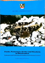 Schadt Jürgen, Fische,m Neunaugen, Krebse und Muscheln in Oberfranken (antiquarisch)