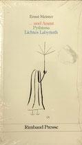 Meister Ernst, ... und Ararat Pythiusa - Lichtes Labyirinth