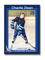DD : Additional Seven Hockey Cards