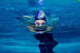 Brustschwimmen Level 2 (Fortgeschritten) für Erwachsene vom 13.10.2018-08.12.2018 in der Carl von Linde Realschule / Tag: Samstag
