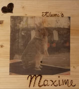 Bild auf Holz 20x20
