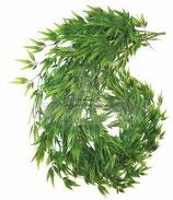Bambusranke