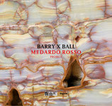 Barry X Ball. Medardo Rosso Project