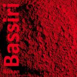 Bizhan Bassiri. Il pensiero magmatico in accademia