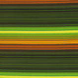 Nano-Softshell Robin Streifen bunt/dunkelgrün