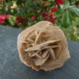 Rose des sables N° 1