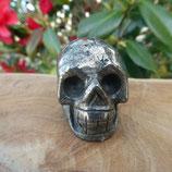 Crâne Bronzite