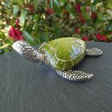 Tortue marine verte & argentée