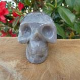 Crâne Agate Botswana