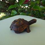 Petite tortue marine Bois