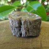 Bois Fossilisé Madagascar N° 7