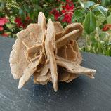 Rose des sables N° 2