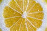 Zitronen-Lavendel-Balsam