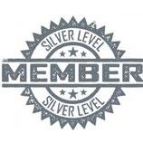 Silver Sponsor 100 EUR