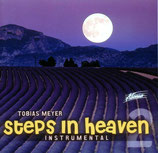 Tobias Meyer - Steps in Heaven