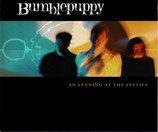 BUMBLEPUPPY - An Evening At The Feelies