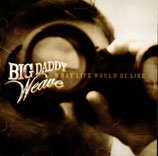 BIG DADDY WEAVE - What Life Would Be Like