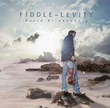 David Klinkenberg - Fiddle-Levity