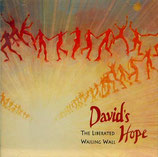 Liberated Wailing Wall - David's Hope