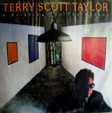 Terry Scott Taylor - A Briefing For The Ascent