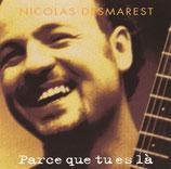 Nicolas Desmarest - Parce que tu es là