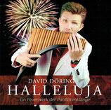 David Döring - Halleluja