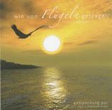 Hans u.Magdalena Gnann - Wie von Flügeln getragen (instrumental)
