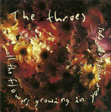The Throes - All The Flowers Mothers CD anfragen!