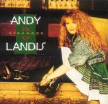 Andy Landis - Stranger