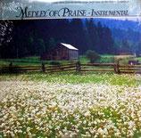 Maranatha Music - Medley Of Praise Strings